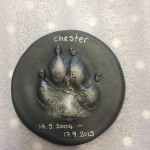 3D casting of Chesters paw